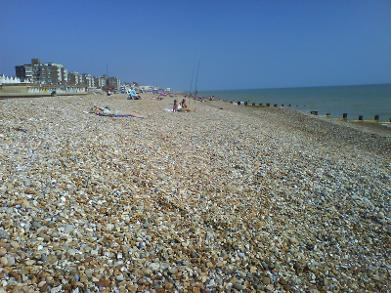 Bexhill on Sea Property to Let